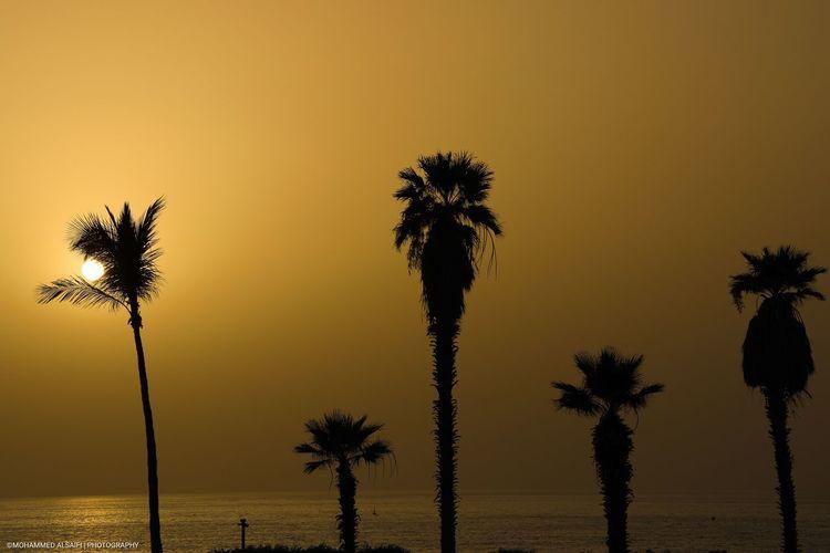 #See #beach