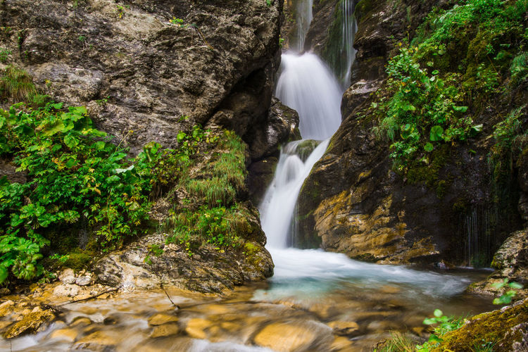 Little waterfall of Rio Arno in Abruzzo Gran Sasso D'Italia Beauty In Nature Europe Falling Water Flowing Flowing Water Forest Gran Sasso Italy Landscape Long Exposure Motion Mountain No People Non-urban Scene Power In Nature Rainforest Rio Arno Rock Rock - Object Rock Formation Scenics - Nature Stream - Flowing Water Water Waterfall