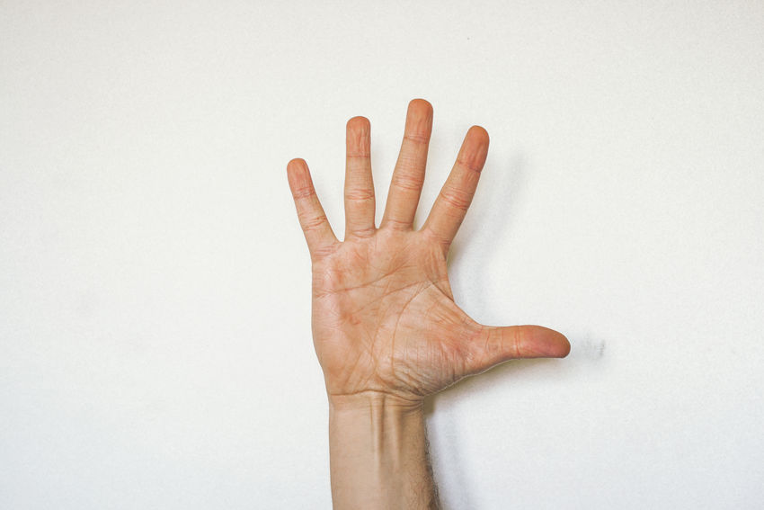 Humand Hand against a white wall Copy Space Five Fingers Palm Close-up Communication Finger Fingers Five Flat Gesturing Give Human Body Part Human Finger Human Hand One Person People Showing Stretch Stretch Out Studio Shot White Background