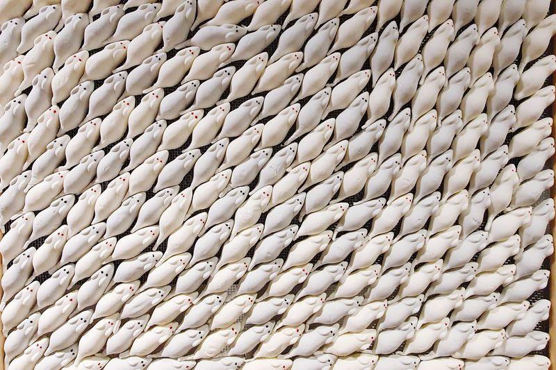 Full frame shot of white beans