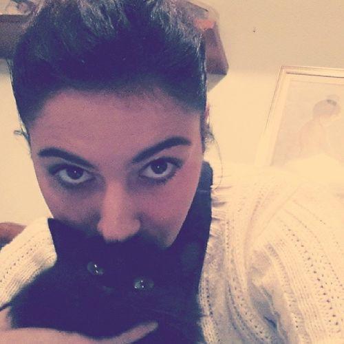 Instracat Instracrazy Crazy Cat loveyou instraloveyou love instrahappy instrafamily friend instragram instraphoto likeforlike likesforlikes followme follow italy ♥