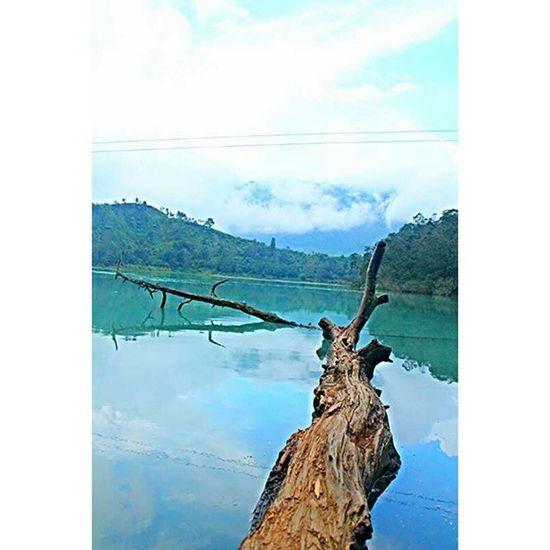 Sederhana tapi indah dilihat :)) Telagawarna Dieng Wonosobo Exsplore Trip Fun Smile Nature Natural Simpleandpure Simple