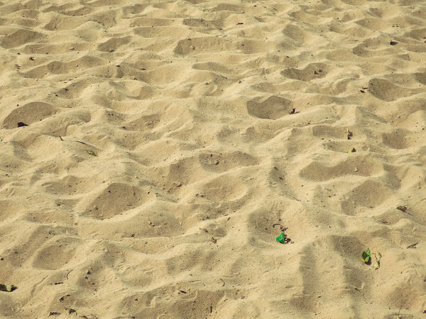 Animal Track Backgrounds Beach Close-up Day Full Frame High Angle View Laos Nature No People Outdoors Pattern Sand Sand Dune Sunlight Track - Imprint Travel