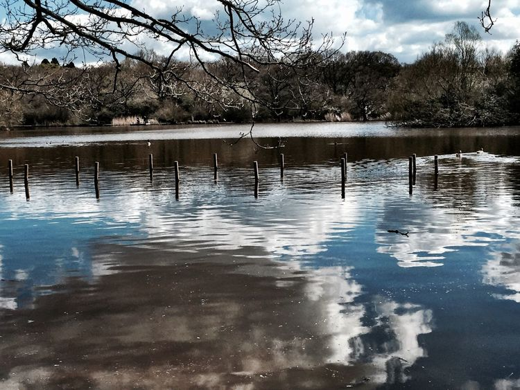 Reflection Clouds Clouds And Sky Reflections Water Reflections Eyeemphotography EyeEm EyeEm Gallery Eyeem Market Landscape Sky EyeEm Nature Lover Sky And Clouds Springtime Spring Spring Into Spring Water Blue Sky Trees Eppingforest Forest