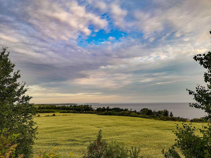 Lac Saint-Jean,