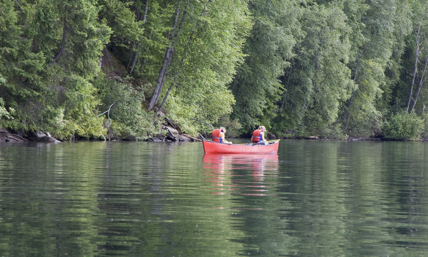 Friends kayaking in river amidst trees in forest