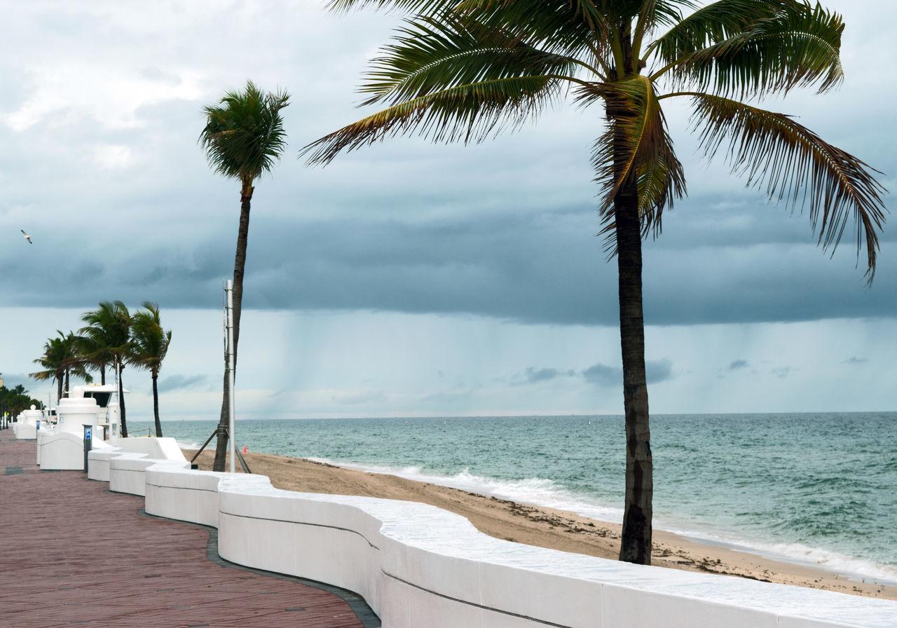 Palm Trees At Beach Against Cloudy Sky