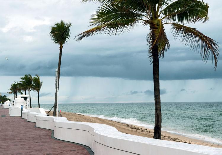 Beach Beach Day Beach Life Beach Photography Beach Time Beach Walk BEACH!  Beachlife Beachphotography Florida Florida Clouds Florida Life Ft Lauderdale