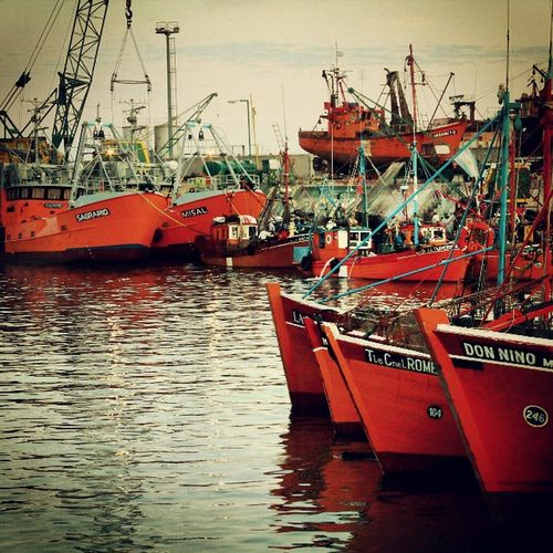 Puerto de Mar del Plata Puerto Port Harbor Pesca Fishing Mardel