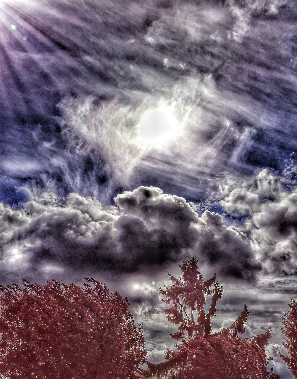 cloud - sky, sky, nature, beauty in nature, atmospheric mood, scenics, no people, low angle view, tranquility, tranquil scene, outdoors, power in nature, day, storm cloud, tree