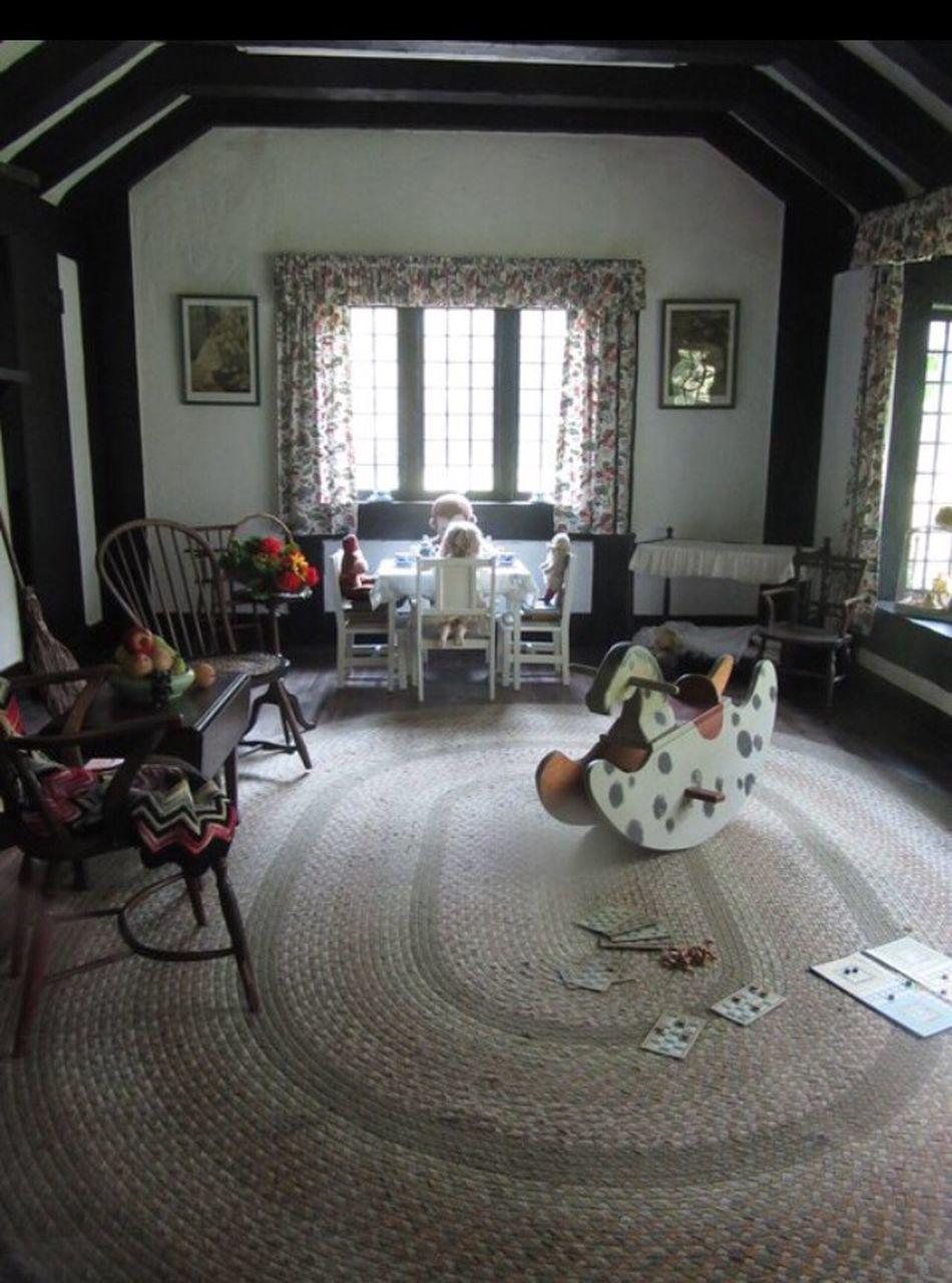 indoors, window, day, no people, animal themes, mammal