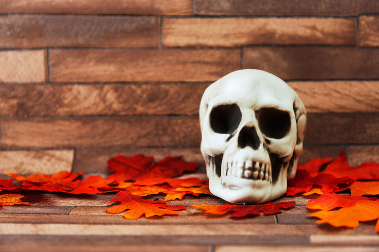 Close-Up Of Human Skull With Autumn Leaves On Table