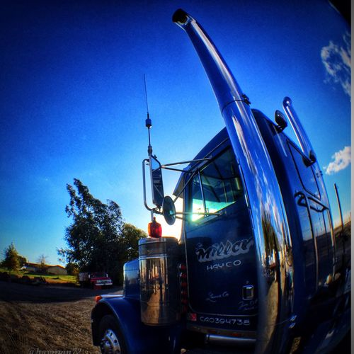 Trucking IPhoneography TeamiPhone6Plus California Love Hayfarmer Cencal Lemoore,California 559 Farm Life Central Californinia Custom