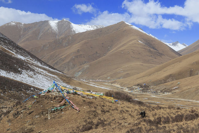 Tibetan landscape in China with prayer flags on foreground and mountains and yaks on background ASIA Nature Qinghai Sichuan Yushu Beauty In Nature Bird China Cloud - Sky Day Landscape Mountain Mountain Range Nature No People Outdoors Scenics Sky Slingshot Tranquility Wildlife