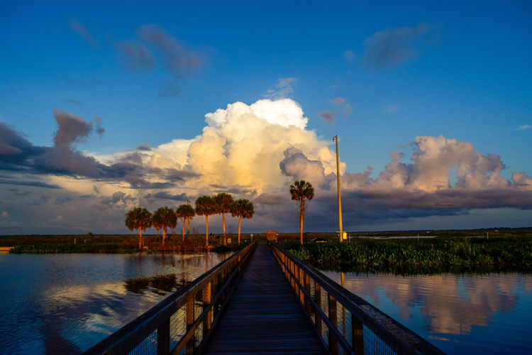 A Storm, Cometh Storm Cloud Light And Shadow Dawn Paynes Prarie Preserve Landscape Picturesque Color Photography Morning Sunrise Lake EyeEm Selects Tree Water Wood Paneling Blue Footbridge Wood - Material Bridge - Man Made Structure Sky Cloud - Sky Boardwalk Pier Tropical Tree Palm Tree Horizon Over Water Tropical Climate Calm