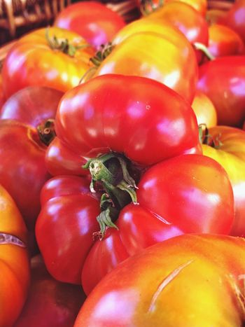 Heirloom tomatoes at local farmers market Ferrybuilding Embarcadero ShotOnIphone Shotoniphone7plus Vegetable Food Healthy Eating Food And Drink Tomato Freshness Red Abundance No People Raw Food Close-up Day Fruit Indoors  Nature Animal Themes Investing In Quality Of Life