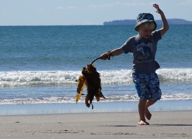 Beach Beach Life Beachfun Child Childhood Happy Child  Sea Seaweed At The Beach Summer Fun Summertime Seaside Holidays Freshness Outdoors Live For The Story Sommergefühle