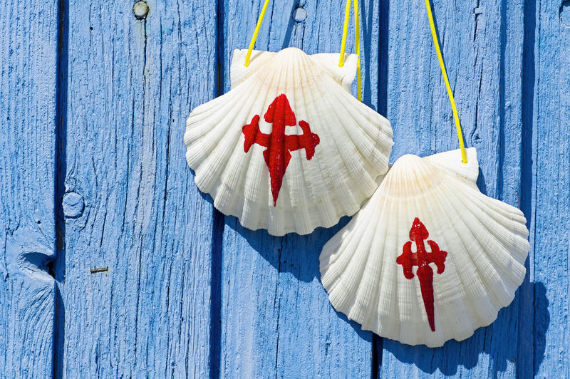 Close-up of pilgrim scallop shells on blue wooden door