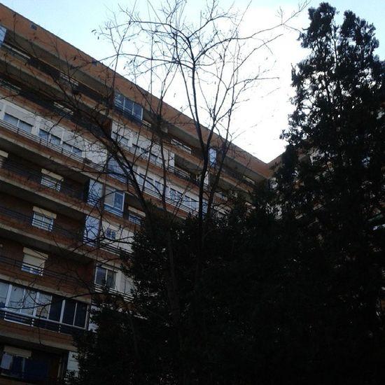 Leganés Madrid