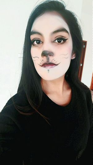 Catmakeup Cat