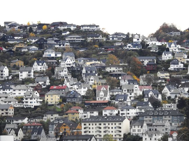 beautiful houses in Bergen, Norway Skyline Noruega Norway Norge Norsk Bergen Houses Mountains Scandinavia Hills Rainy Buildings Trees Green Flowers,Plants & Garden Nature Construction Architektur Architettura City Cityscape Urban Skyline Building Exterior Architecture Urban Sprawl Residential District Residential Building Town Rooftop Residential Structure