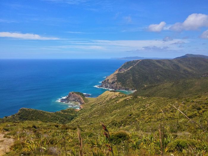 https://youtu.be/dUu3gRHku2Q 😁😎😉For Your Viewing Pleasure😁😁😎 Techno Viking Tranquil Scene Cloud - Sky Spiritual My Travels End Of New Zealand Summer NZ Style Cape Reinga New Zealand Unapologetically Aupouri Peninsula My Country Is Beautiful Horizon Over Sea State Highway 1 New Zealand Travel Destinations Betterlandscapes Harakeke New Zealand Culture Haere Mai💁😃 Scenics Welcome Guidance Tourism Outdoors Mountain The Great Outdoors - 2017 EyeEm Awards