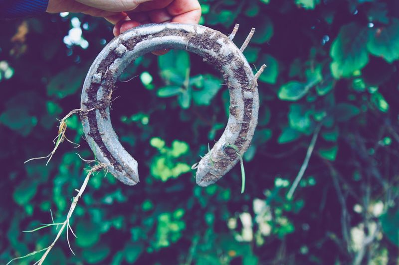 Used horseshoe Dirty Fingers Hand Part Part Blurred Background Horseshoe Find Used No People Focus On Foreground Close-up Day Nature Outdoors Green Color