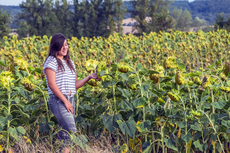 Girl Smiling While Standing At Sunflower Farm
