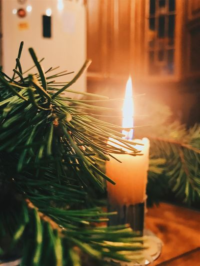 Christmas Indoors  Christmas Decoration Candle Celebration Illuminated Close-up Flame No People Home Interior Green Color Night Christmas Ornament christmas tree Burning