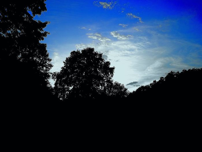 Landschaft Landschaften Tree Silhouette Astronomy Pixelated Sky Close-up Sky Only Heaven Cumulus Cloud Fluffy The Great Outdoors - 2018 EyeEm Awards
