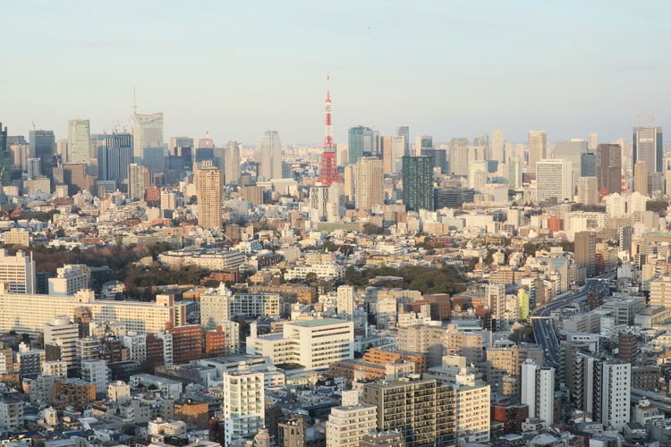 Building Exterior Architecture City Built Structure Building Cityscape Skyscraper Sky Office Building Exterior Tall - High Crowd Day Tower Urban Skyline Crowded Residential District Nature Landscape Modern Outdoors Financial District  Settlement Tokyo Tokyo Tower High Angle View