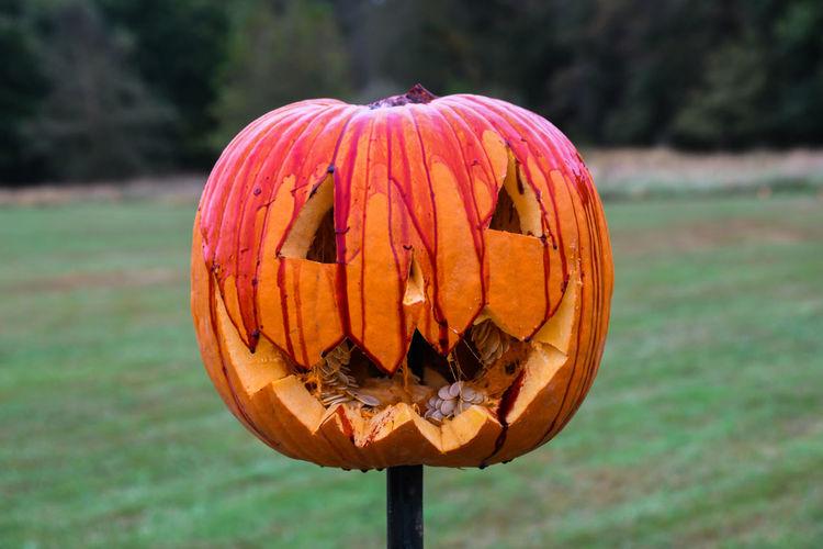 Bloody Pumpkin