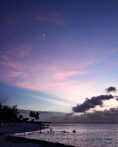 Moon Water Astronomy Sea Galaxy Tree Beach Sunset Moon Beauty Astrology Sign