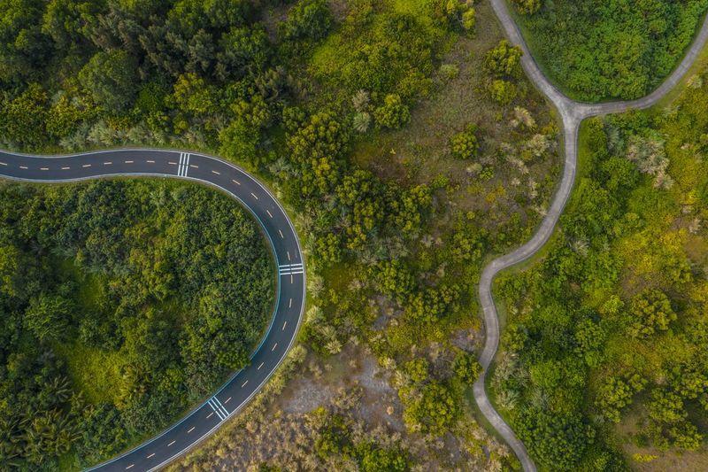 绿 Aerial View