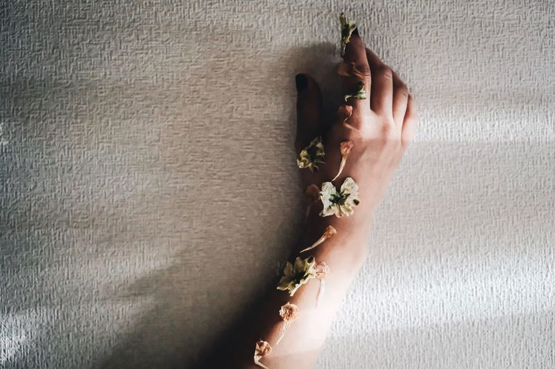 Hand Human Hand One Person Human Body Part Real People Wall - Building Feature Lifestyles Plant Women Sunlight Body Part Nature Leisure Activity Indoors  Day Personal Perspective Close-up Adult Holding Finger