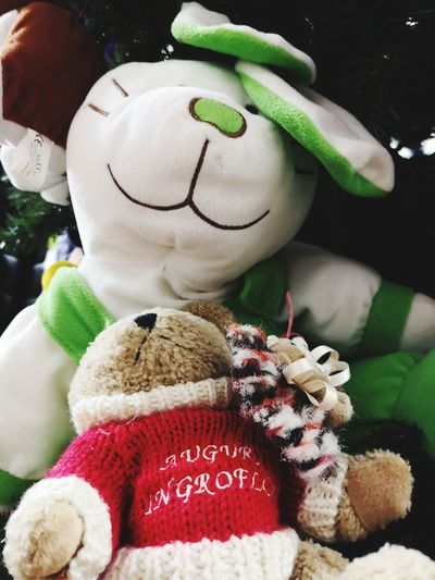 Me and my friend Sleeping Puppy Bunny  Little Bear Christmas Decoration Christmas Stuffed Toy Holiday - Event Winter Close-up Green Color Doll Puppet