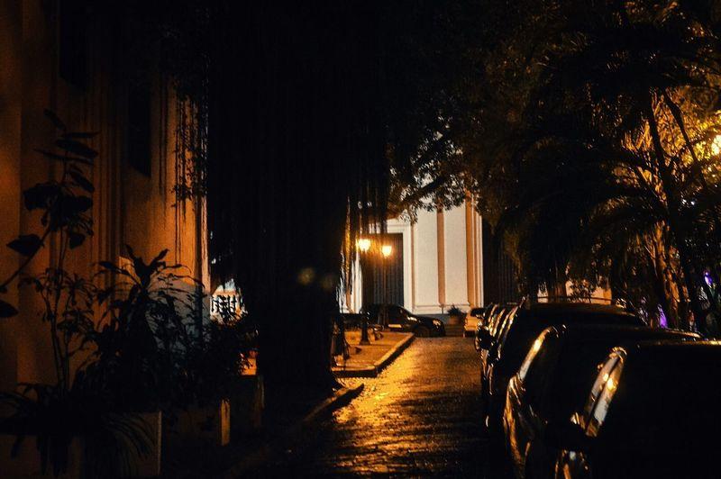 Streets Of San Juan Night Tree Illuminated No People Outdoors Architecture Nature Blackandwhite Old Town San Juan Puerto Rico The Street Photographer - 2017 EyeEm Awards