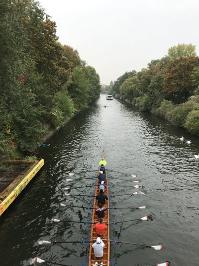 High angle view of people rowing scull on river against trees