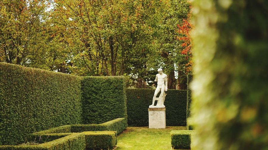 Statue by hedge in garden against trees