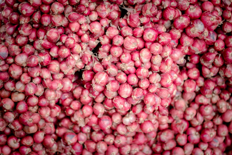 Full frame shot of berries