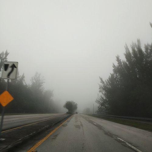 First Eyeem Photo Nature Foggy Foggy Morning Road Baron  EyeEmNewHere