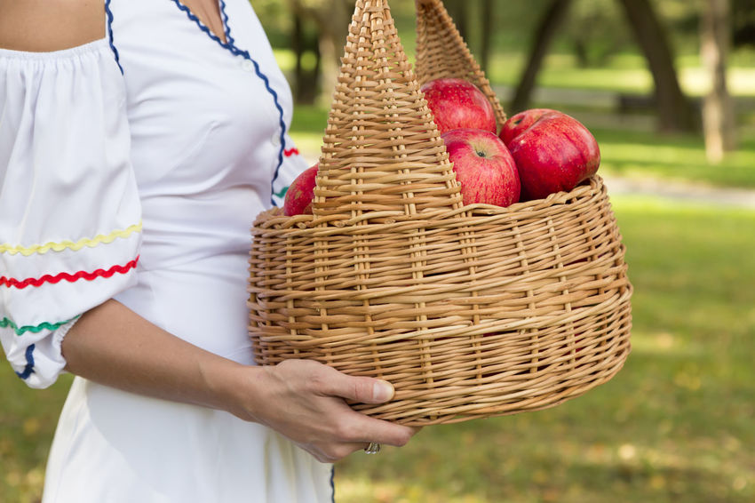 woman carry a harvest of red apples in a wicker basket Hand Agriculture Apple Bio Diet Eco Family Farm Gardener Rustic Vegetarian Apples Basket Food Fresh Garden Girl Harvest Healthy Eating Healthy Food Organic Picking Red Apple Ripe Straw Vegan Juicy Cultivated Harvesting Wicker