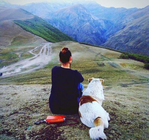 #LifeIsBeatiful #Georgia #QazbekMountain Dog Nature Outdoors Mountain Lifestyles First Eyeem Photo