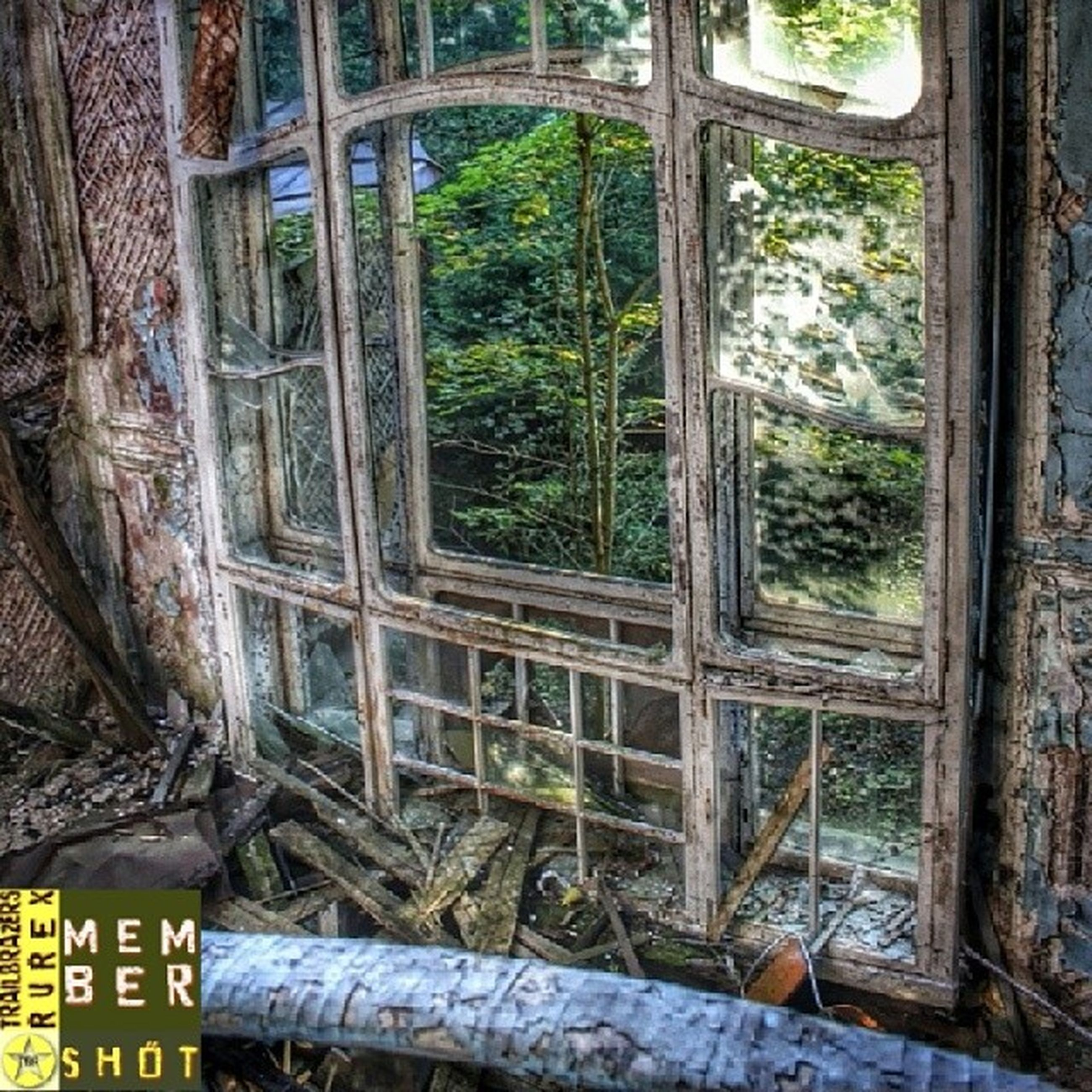 built structure, tree, architecture, old, wood - material, abandoned, building exterior, text, day, obsolete, window, weathered, damaged, no people, house, wall - building feature, run-down, outdoors, railing, deterioration