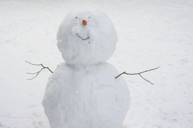Farewell smile Cold Temperature Nature No People Outdoors Snow Snowing Snowman White Color Winter