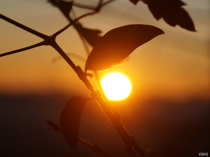 Silhouette Background Sunset Orange Color EyeEm Best Shots Sunlight Outdoors Sky Nature No PeopleBeauty In Nature EyeEm Nature Lover My Last One Good Night....🙄