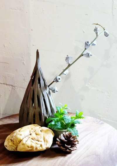 Wall - Building Feature Plant No People Table Food Food And Drink Nature Potted Plant Freshness Container Indoors  Still Life Flower Vase Growth Day Herb Wood - Material Wall Sunlight