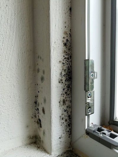 Mold Window Tread Profile Moldy Wall No People Indoors  Technology Connection Day Close-up Metal Wall - Building Feature Dirt Pipe - Tube