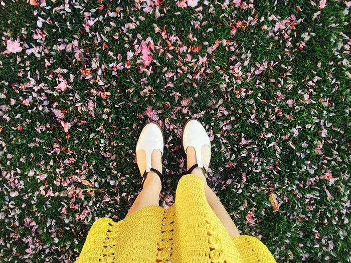 Low Section Of Woman Standing On Fallen Flower Petals On Grass In Park