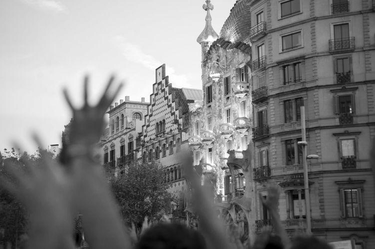 Fa tres segles que els borbons pretenen ser els nostres reis ignorant fins a quin punt arribem a passar d'ells. Però si insisteixen gaire amb aquesta obsessió, els mostrarem nostra debilitat pel tall rodó. Votarem Catalunya Barcelona Catalunya Lliure Votarésdemocràcia Catalunya Is Not Spain 1oct Democracia Stop Fascism Catalunya Independent Adeu España My Point Of View Stop Fascismo Barcelona Llibertat Love♡